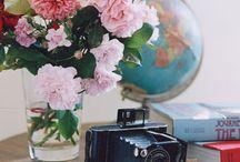 Lovely Vignettes / by Barbara Stevens