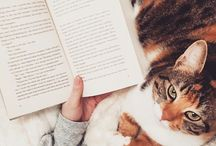 Books, coffee and cats