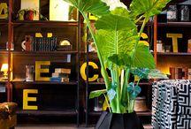 Indoor Gardening / Indoor Gardening
