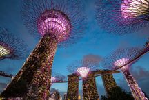 SINGAPORE / Our favorite places of all time!