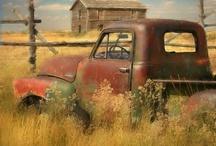 Farming  / by Debra Finck
