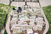 Party Favour Ideas / Ideas for party favours to give you guests