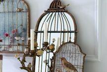 ~Birds, Birds, Birds~ / by Vickie Wade
