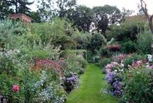 Enemmän puutarhaa / Ideoita ja unelmia puutarhasta