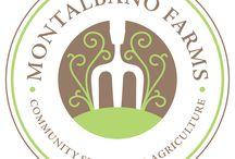 Farm / Montalbano Farms in Sandwich, Illinois