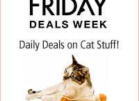 Deals on Cat Supplies / Cat Supplies and find that rare deal instead of paying top price.