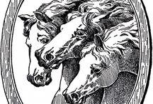 pyrograf konie