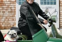 Celebrity Dogs / Images of celebrities with their dogs and dogs that are celebrities. Where can we get an autog-ruff?!