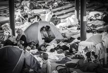 research // refugees