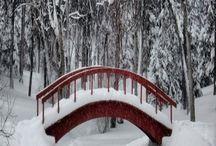 Architecture:  Bridges / by Jean Cadman Smith