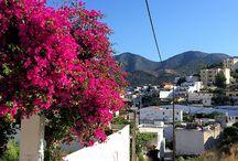 Grèce / La Crète, cette île grecque paradisiaque encore sauvage...