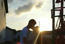 Meu Girassol