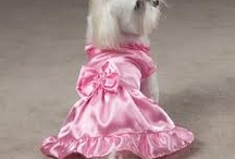 Pretty in Pink Dog Dresses / Fun look at pink dog dresses #pinkdogdresses I think I like this more for the cute pictures of dogs all dolled up in pink dresses.