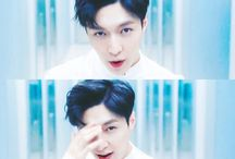 soft / . zhang yixing.