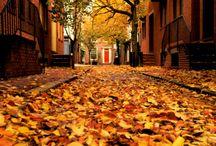autumn&winter...