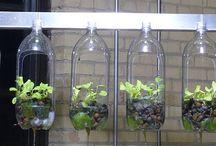 Special planters / zahradničení
