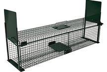 gabbie e trappole per animali selvatici