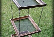 dry herbs in picture frames