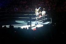 wrestling / wrestling's life
