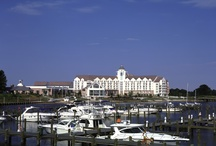 The Marina / by Hyatt Regency Chesapeake Bay Golf Resort, Spa & Marina