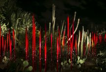 Dale Chihuly at Desert Botanical Garden / 21 Dale Chihuly artisan creations are on display at the Desert Botanical Desert. The exhibition opens Sunday, Nov. 10, 2013 and runs through May 18, 2014. / by azcentral
