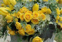 Kwiaty # flowers