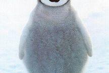 ペンギン♡