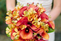 BOUQUET de Casamento / Os mais lindos bouques de flores.