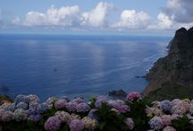 Madeira Casa / Country cottage with exceptionnal view on Madeira Island