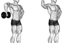 bodybuilding arka kol