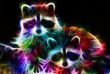 Neon állatok