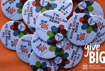 GiveBIG 2016 / by PAWS Progressive Animal Welfare Society
