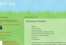 Waldorf Education