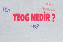 Rehberlik / TEOG, YGS, LYS, KPSS Rehberlik Yazıları