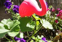 Inspired @ the Gardens / Garden Fun & Whimsy