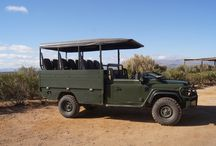 Safari Vehicles !!! / Safari Vehicles in Africa. Amazing views of what you can see from these vehicles.