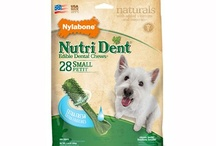 Dog Treats/Edible Chews / by Nylabone Products