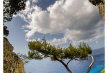Italy / by Judy Hart