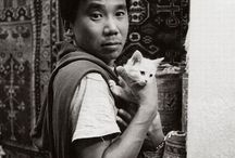 Writers and Kitties