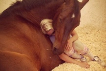 MIRACULOUS & LOVING FRIENDSHIP BETWEEN YOUNG GIRL & HER HORSE