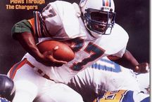 Miami Dolphins / If I am going to be on Pinterest, you'll have to suffer the pins about my favorite team as I go.