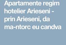 Apartamente regim hotelier Arieseni