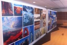 Behang / foto behang / Full color print / Projecten die we hebben uitgevoerd met ontwerp van het fc behang alles in eigenbeheer