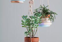 Plant hangers DIY