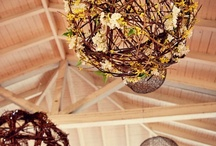 Inspirations: Rustic Decor / by Rose of Sharon Floral Designs