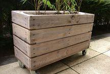 Garden: DIY ideas