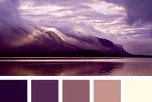 Ev Dekorasyonu Renk Uyumları