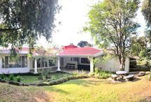 Los Laureles Escazu single level house with pool and large garden