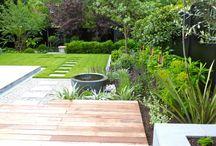 Fioletowy ogród