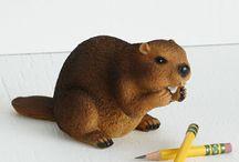 Beaver bæver